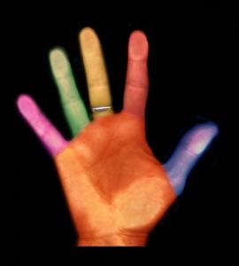 Inclusive - diversidade - palma de mão aberta com um dedo de cada cor