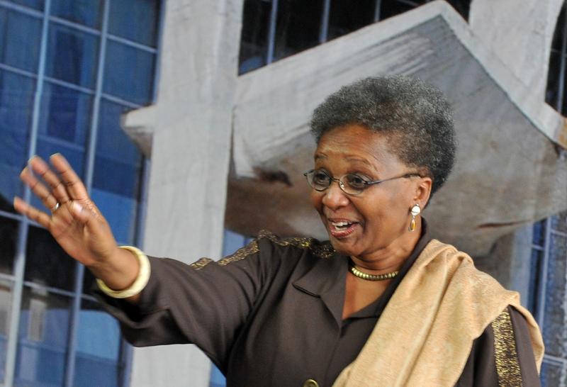 Ministra Luiza Bairros