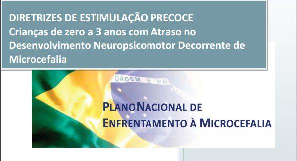 Diretrizes-de-Estimulacao-Precoce - bandeira do brasil.