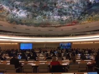 Sala do conselho de direitos humanos. Plenaria com telao ao fundo e teto em tons de azul