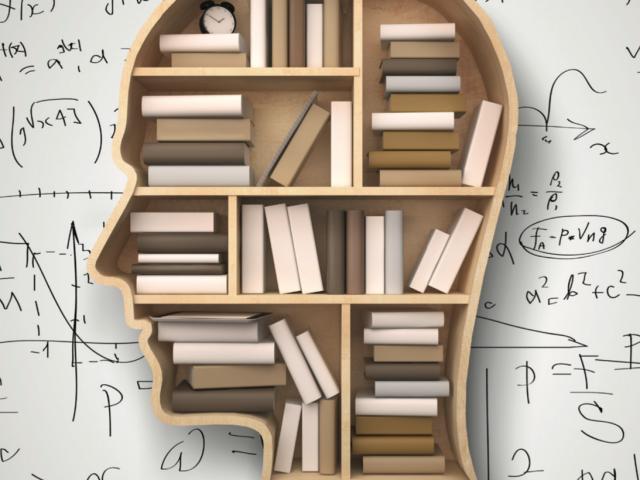 foto de estante de livros em formato de cabeça de perfil.
